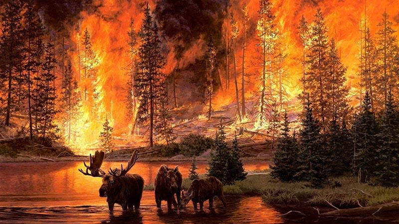 Как да се предпазим от пожар